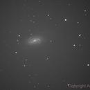 NGC 2903 single frame,                                agostinognasso