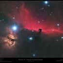 Barnard 33,                    Frank Schmitz
