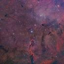 IC1396 Elephant's Trunk w/RASA,                                Brett Creider