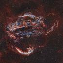 The Cygnus Loop,                                Jeffrey Horne