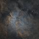 NGC 6823,                                Dave Watkins