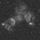 IC 443 (Jellyfish Nebula) - Sh2 249,                                remidone