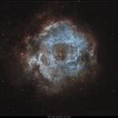 Rosette Nebula NGC2237 and Open Cluster 2244,                                Stefan B.