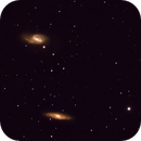 M65 and friends-The Leo Triplet,                                gibran85