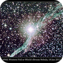 NGC 6960, Western Loop of Veil or Witch's Broom Nebula,                                David Dearden