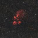 NGC 6334 - Cat's Paw Nebula,                                Leonardo Ciuffolotti