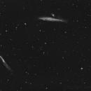 NGC4631 NGC4656,                                Juergen