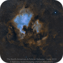 North American and Pelican Nebulae,                                BalconyAstroImaging