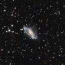 NGC 2146,                                jeff