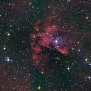 NGC 281 / IC 1590,                                H.Chris