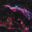 NGC 6960 - Western Veil Nebula,                                Dustin Smith