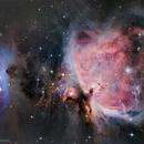 The Orion Nebula and Running Man Nebula,                                geethq