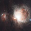 Orion Nebula M42,                                Michael Mantini