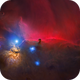 The starless Horsehead nebula,                                Trần Hạ