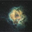 Rosetta Nebula,                                John Bunyan