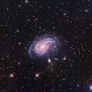 NGC 772 - The Nautilus Galaxy in Aries,                                Terry Danks