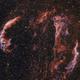 Cirrusnebel Bicolor,                                Joschi