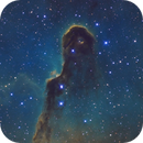 IC1396 SHO,                                Christopher Gomez