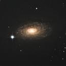 NGC5055,                                Matthew Terrell