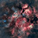 Sadr Region and Butterfly Nebula,                                Lancelot365