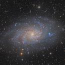 Messier 33 (Triangulum Galaxy),                                  Roman Feldhaas