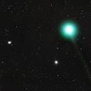 Comet C/2014 Q2 Lovejoy,                                ashley