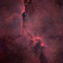 IC 1396 •Elephant Trunk Nebula in HaRGB,                                Douglas J Struble