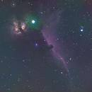 IC 434 Horse Head Nebula-NGC 2024 Flame Nebula-Ha-RGB-Meade 80 ED triplet-ASI 1600-MM-Pro-crop,                                Adel Kildeev