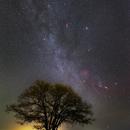 The Autumn Milky Way,                                Toshiya Arai