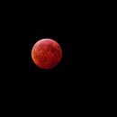 Lunar Eclipse -- January 2019,                                Mike Kline