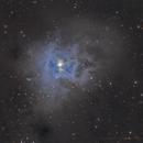 Iris Nebula,                                Bruce