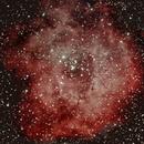 NGC2244, Rosettennebel,                                Peter Schmitz