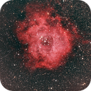 Rosett Nebula  NGC 2238,                                Jim Swiger