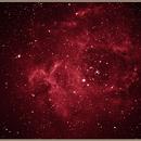 The Rosette Nebula - NGC 2237,                                  Jason Doyle