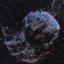 IC443 JellyFish Nebula - HSS,                    Jerry Macon