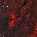 IC 5070 Pelican Nebula,                                Murat SANA