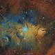 Area surrounding NGC2264 Christmas tree cluster,                                Paweł Radomski