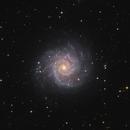Messier 74,                                Bart Delsaert