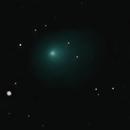 Comet Wirtanen/46p,                                Jeffrey Horne
