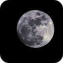 moon 100%,                                Robert Koprowski...