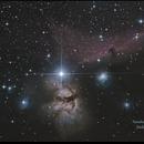 Horsehead Nebula with no guiding,                                J Holland