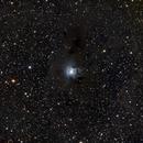 NGC 7023 Iris Nebula,                                starbuck