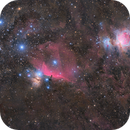 Orion's nebulae,                                alexbb