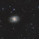 M95 LRGB,                    Albert van Duin