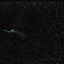 Western Veil Nebula Wide shot,                                  Miles Chatterji