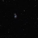 Whirlpool galaxy,                                Ivana