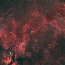 Crescent Nebula Widefield HaRGB,                                Greg Nelson
