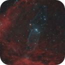 Bat and Squid Nebula Ou4,                                Tim Gillespie