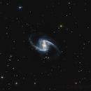 NGC 1365,                                Yuri Puzzoli