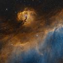 Firebird in Space,                                Alex Roberts